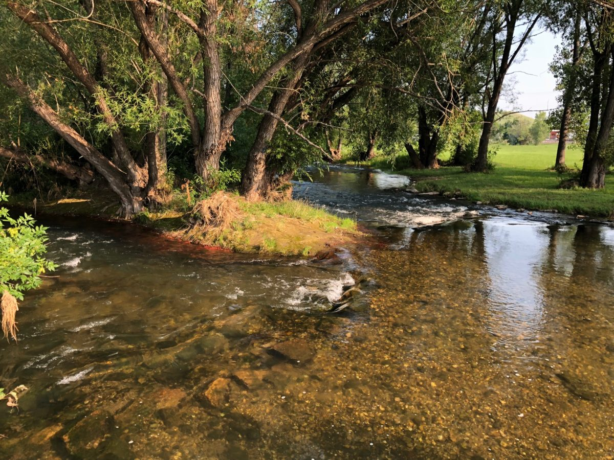 Rivers at Risk: Pollution problems persist as state oversight lags
